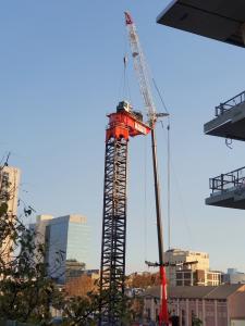 Crane being erected onto the Parramatta Square 6 & 8 site