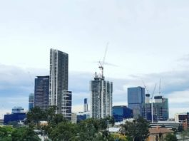 Parramatta Cranes on the Skyline